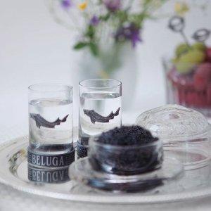 beluga-serve-chilled