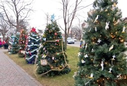 Decorated Christmas trees lines the sidewalks through Kellogg Park