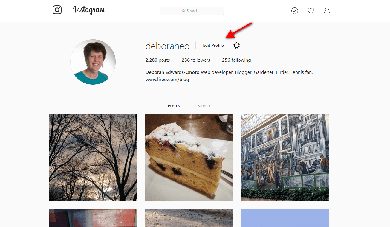 Instagram account page with Edit profile link highlighted with red arrow