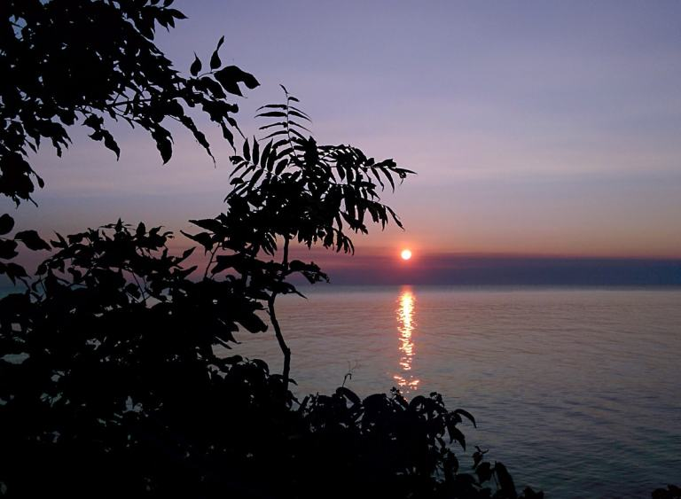 Brilliant orange sun sets in the horizon over calm blue waters, silhouetted by tree branches