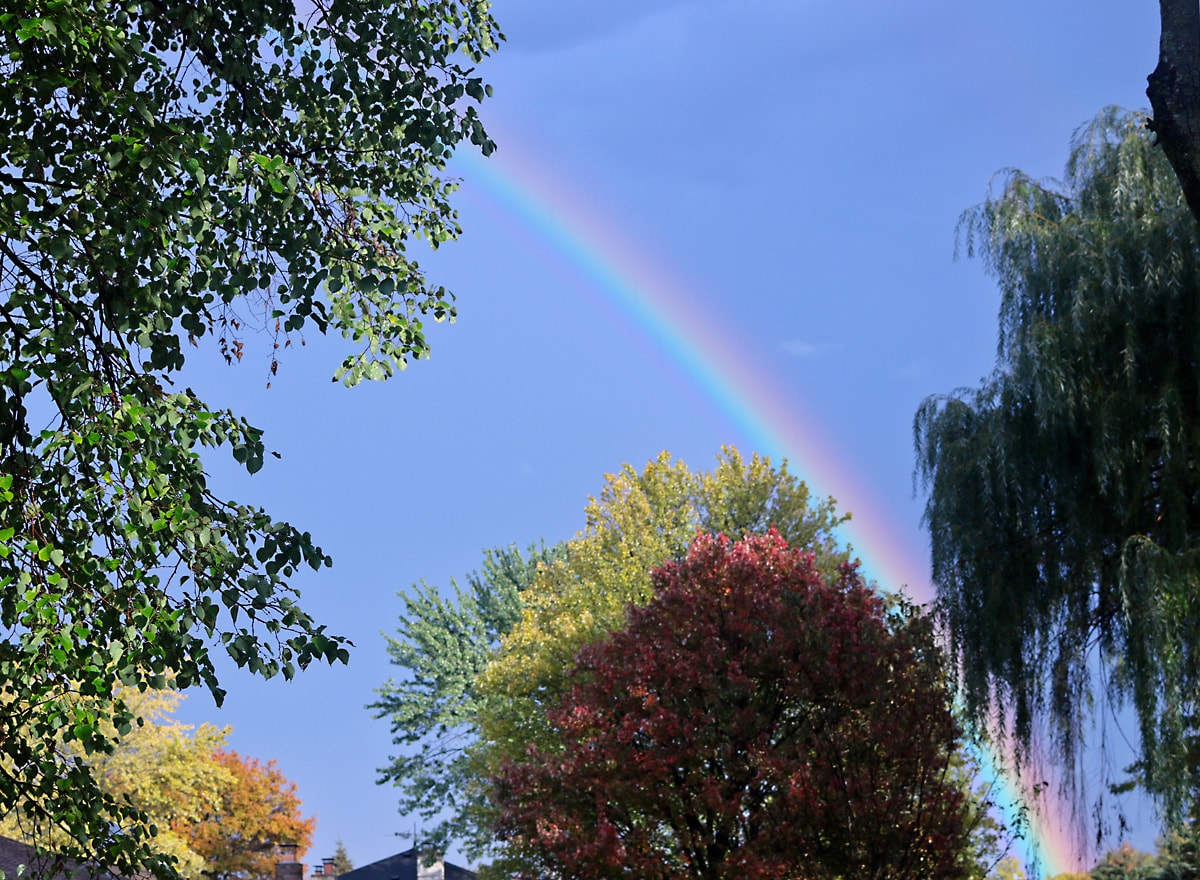 pink, yellow, and green rainbow arches across the blue sky