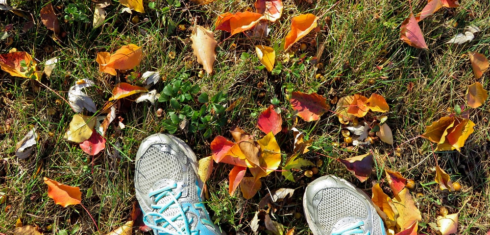 Running shoes on grass with colorful fall leaves