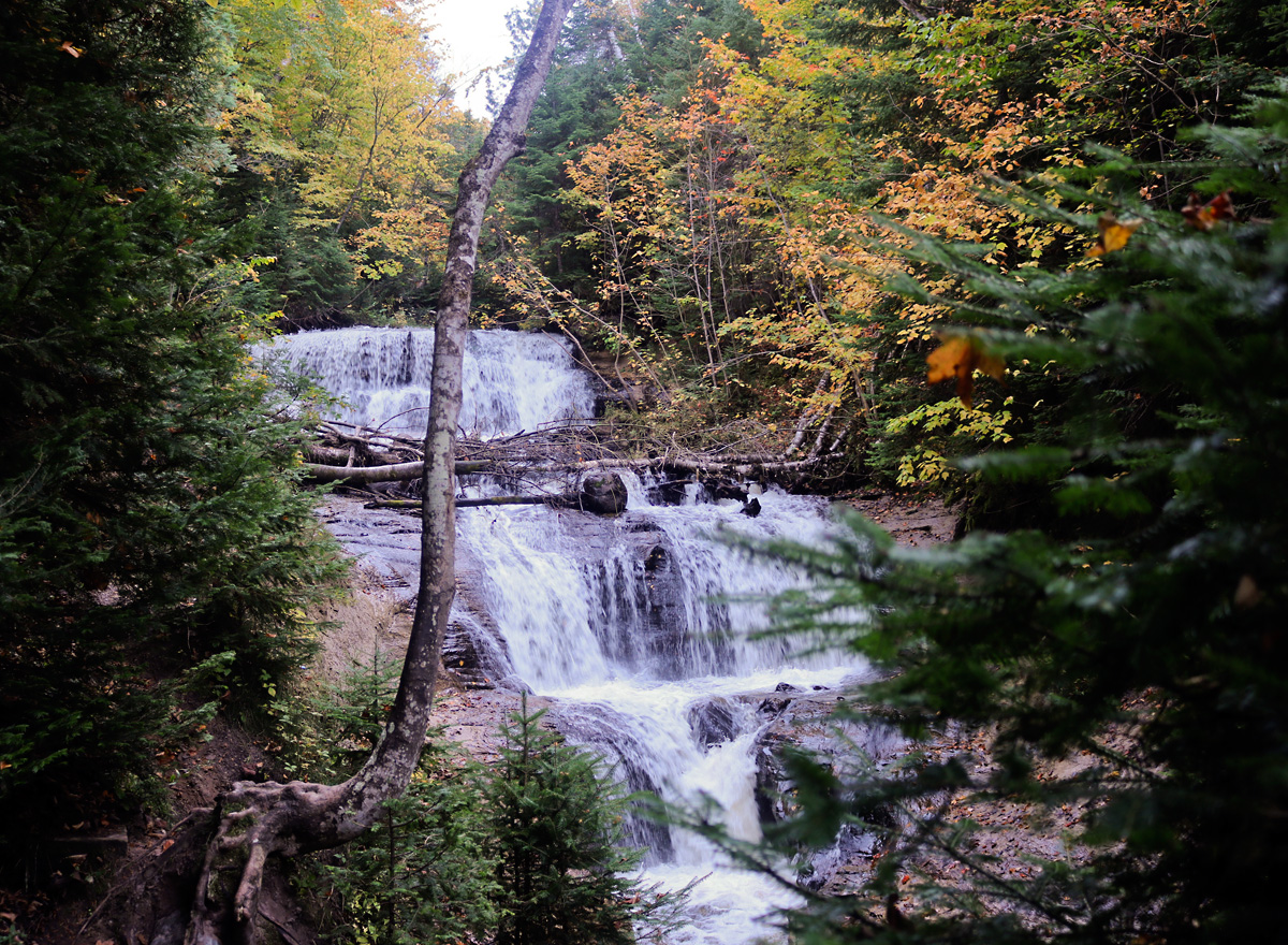 waterfalls tumbling over sandstone, framed by gold and yellow fall trees