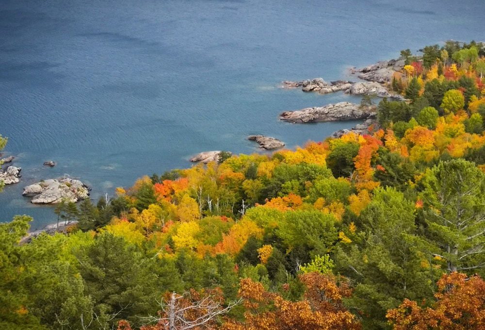 Fall colors around Marquette Michigan, with view of the harbor