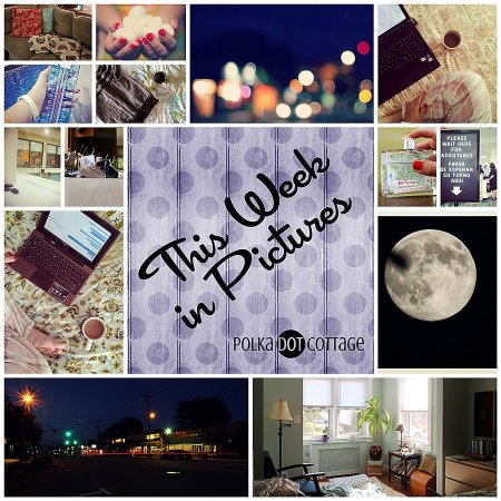 The Week in Pictures, Week 33, 2014