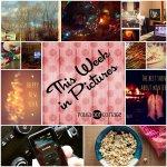 This Week in Pictures, Week 1, 2015