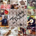 This Week in Pictures, Week 3, 2015