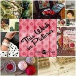This Week in Pictures, Week 8, 2015