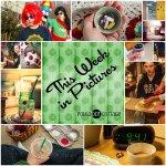 This Week in Pictures, Week 9, 2015