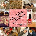 This Week in Pictures, Week 11, 2015