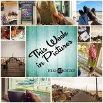 This Week in Pictures, Week 15, 2015
