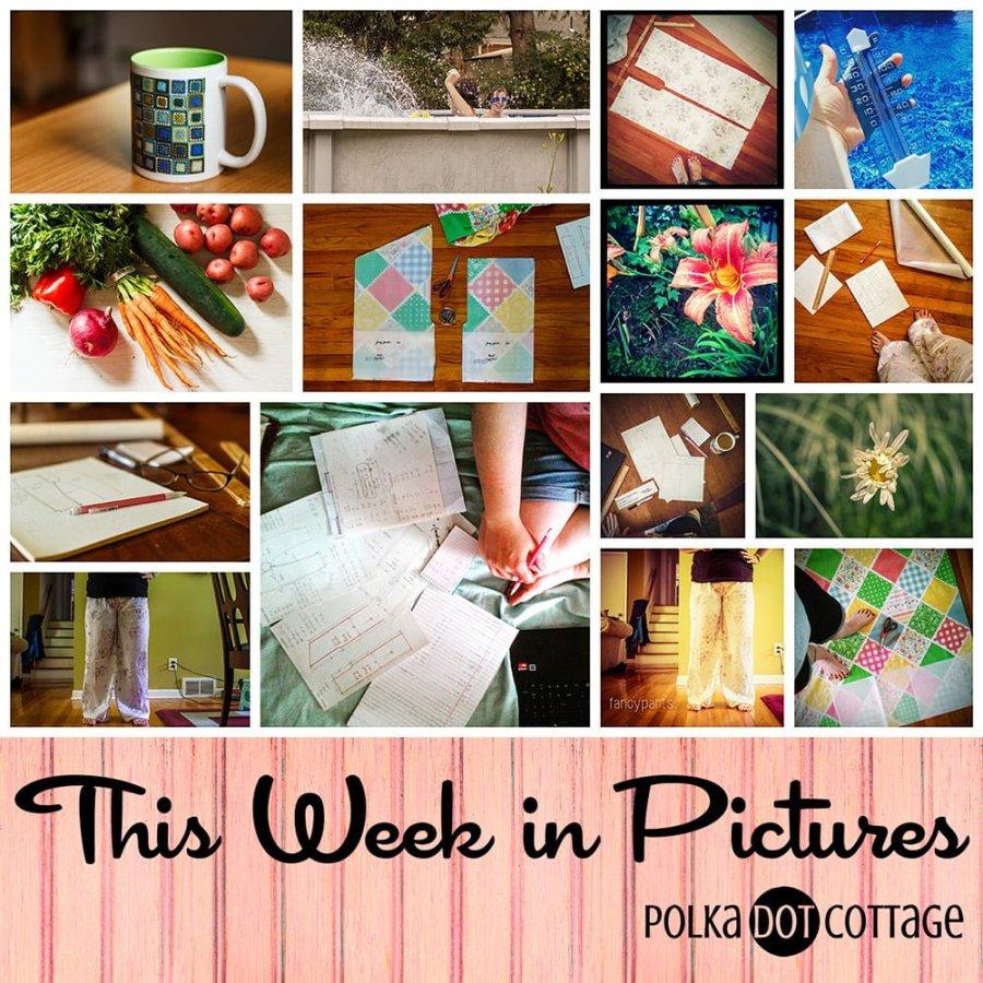 This Week in Pictures, Week 25, 2015