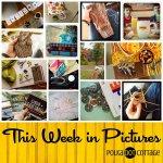This Week in Pictures, Week 42, 2015