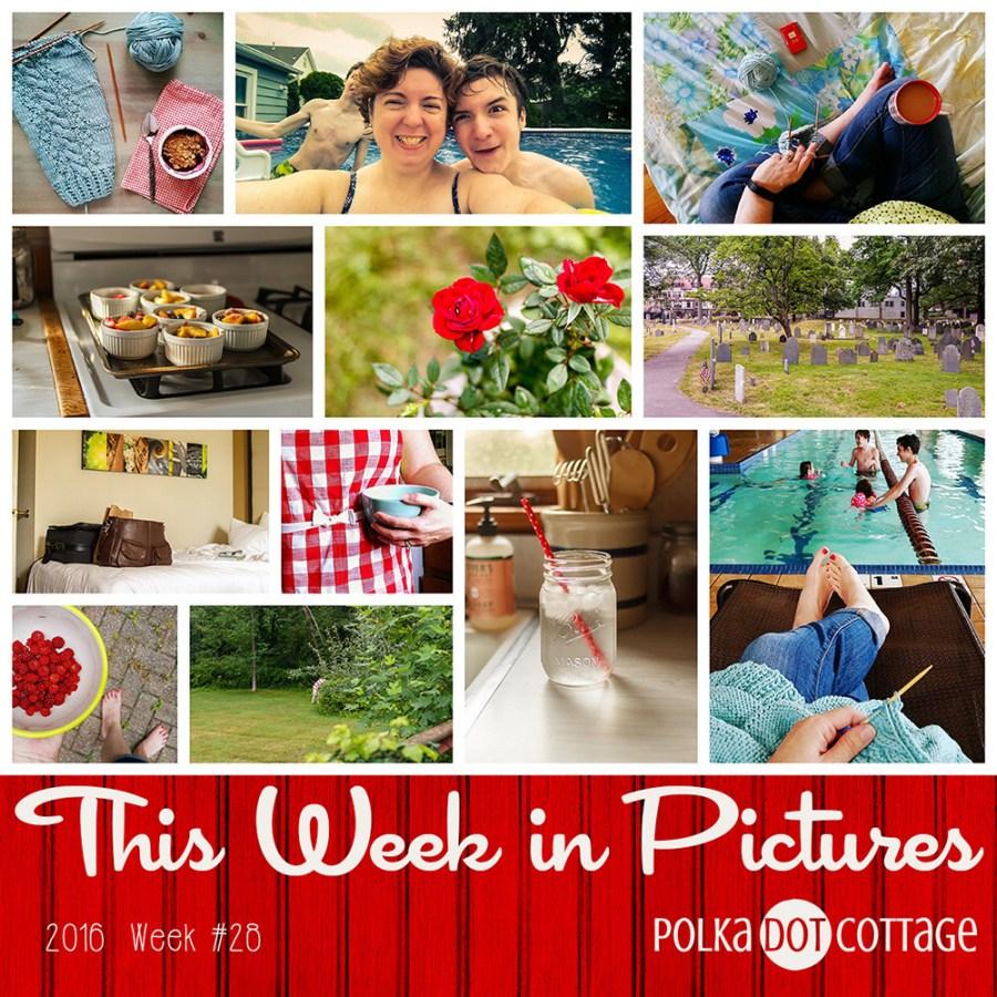 This Week in Pictures, Week 28, 2016