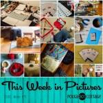 This Week in Pictures, Week 41, 2016