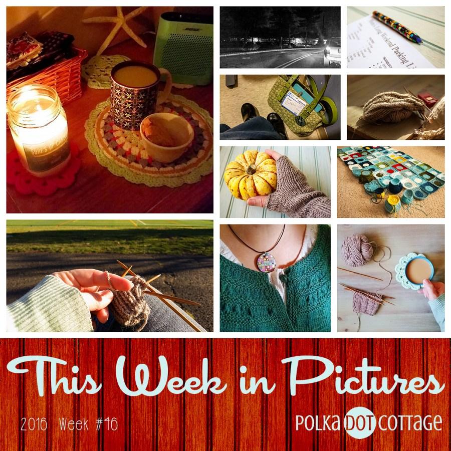 This Week in Pictures, Week 46, 2016