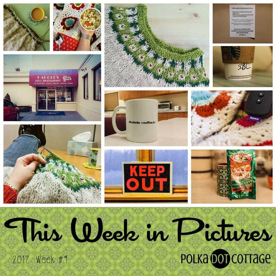 This Week in Pictures, Week 4, 2017