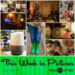 This Week in Pictures, Week 52, 2016