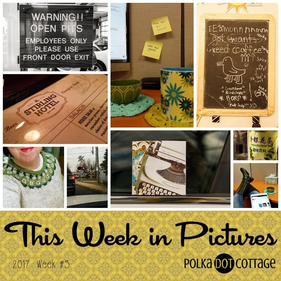 This Week in Pictures, Week 5, 2017