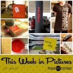 This Week in Pictures, Week 9, 2017