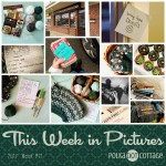 This Week in Pictures, Week 14, 2018