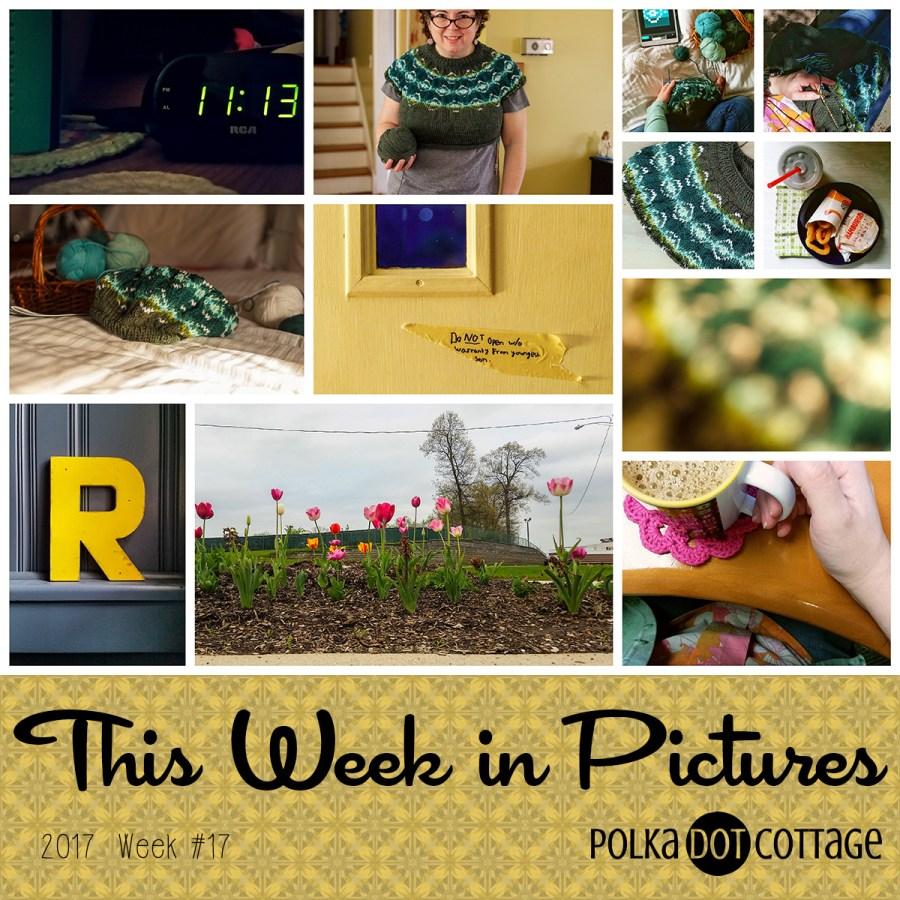 This Week in Pictures, Week 17, 2017