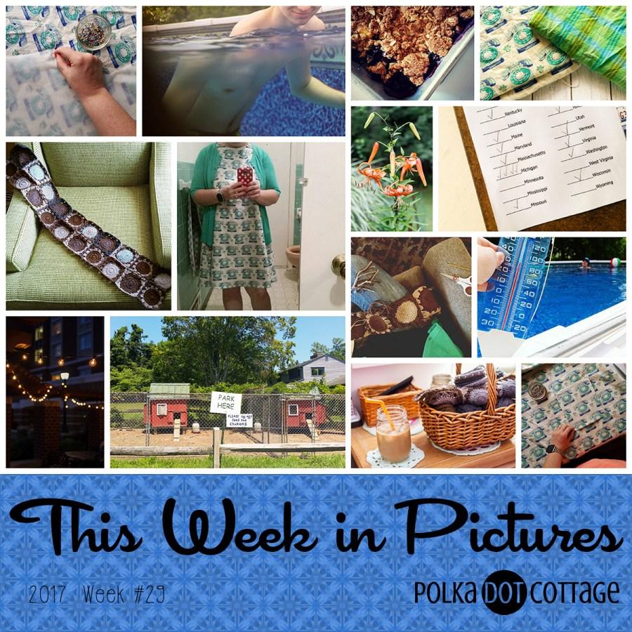 This Week in Pictures, Week 29, 2017