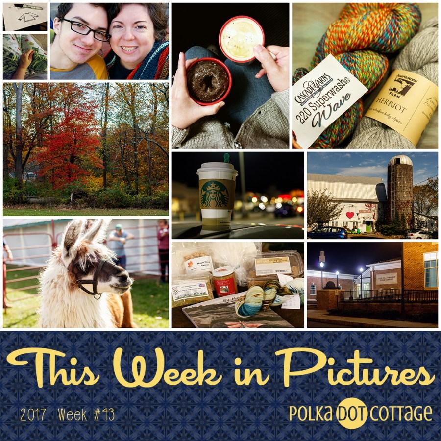 This Week in Pictures, Week 43, 2017