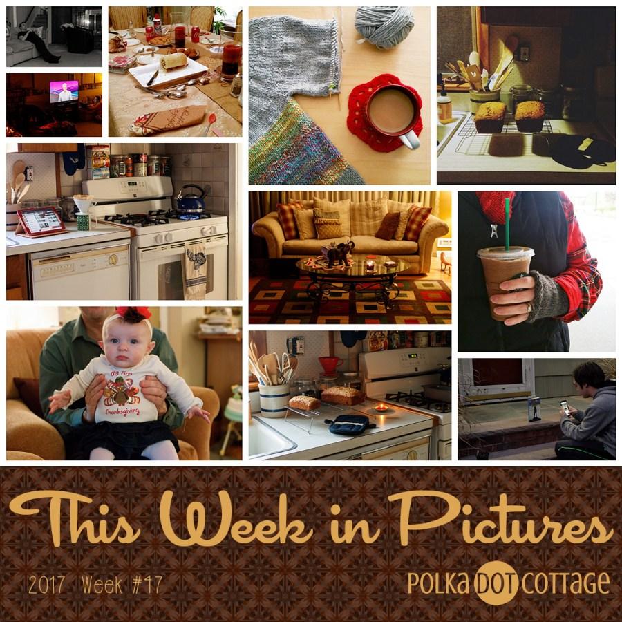 This Week in Pictures, Week 47, 2017