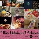 This Week in Pictures, Week 49, 2017