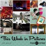 This Week in Pictures, Week 2, 2018