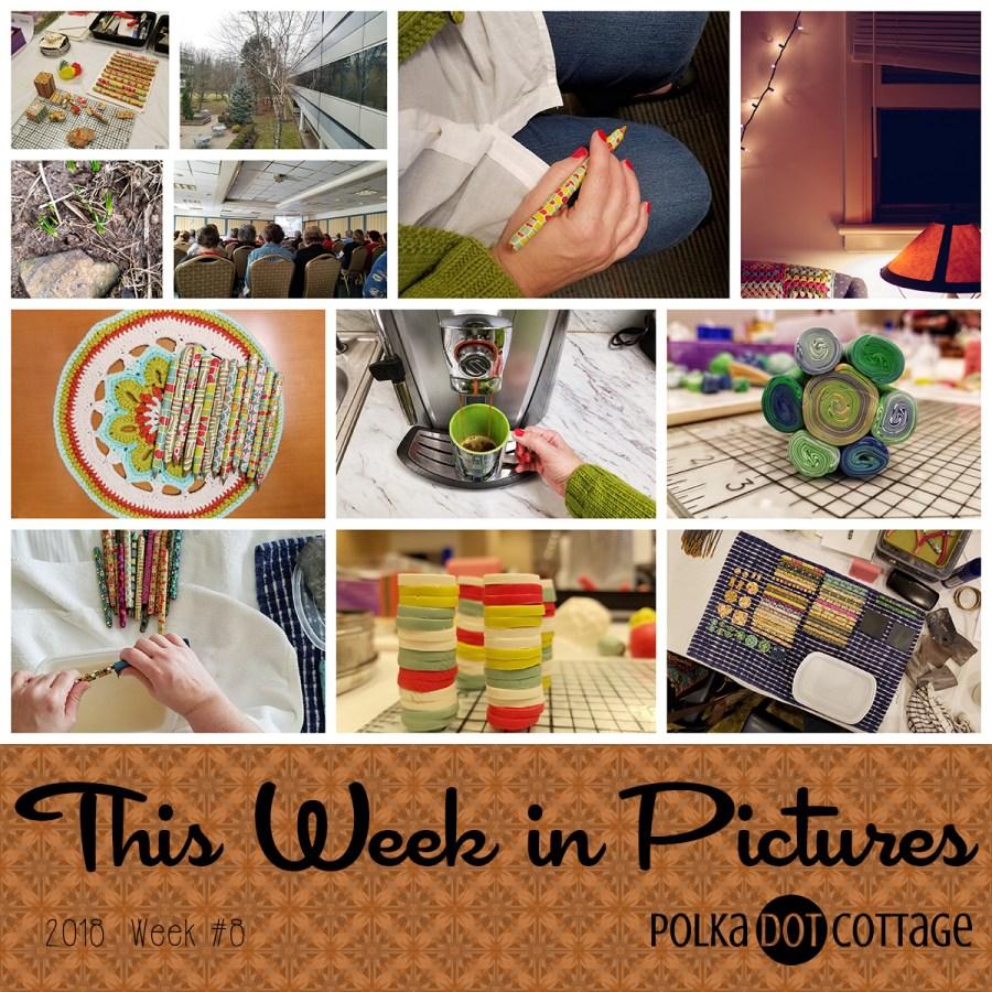 This Week in Pictures, Week 8, 2018