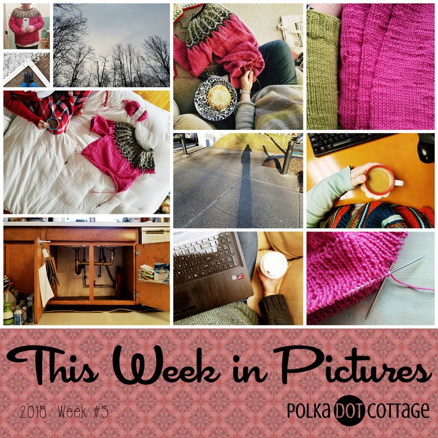 This Week in Pictures, Week 5 2018