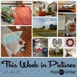 This Week in Pictures, Week 33, 2018