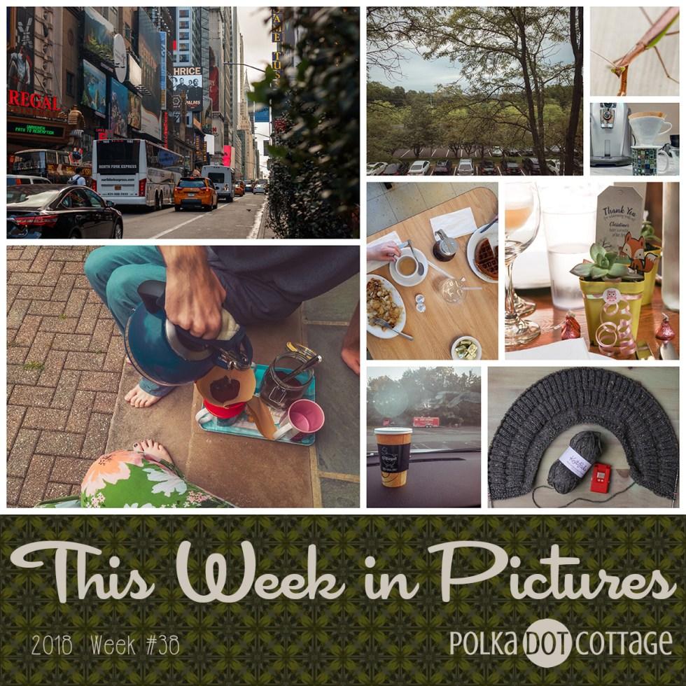 This Week in Pictures, Week 38, 2018