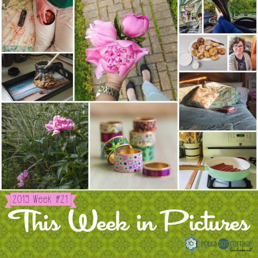 This Week in Pictures, Week 21, 2019