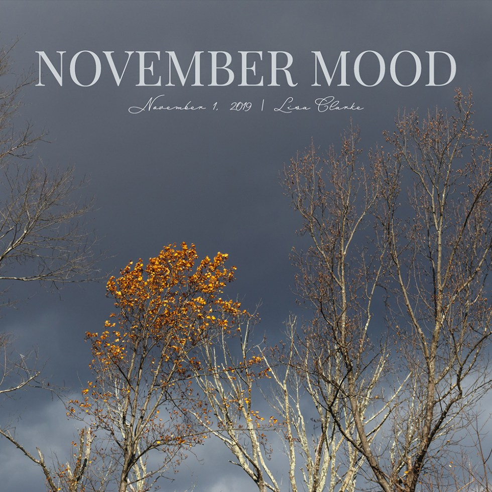 November Mood Playlist on Spotify by Polka Dot Radio