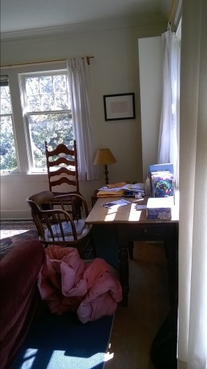 photo of cluttered living room