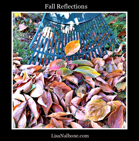 Fall reflections Lis Nalbone.com