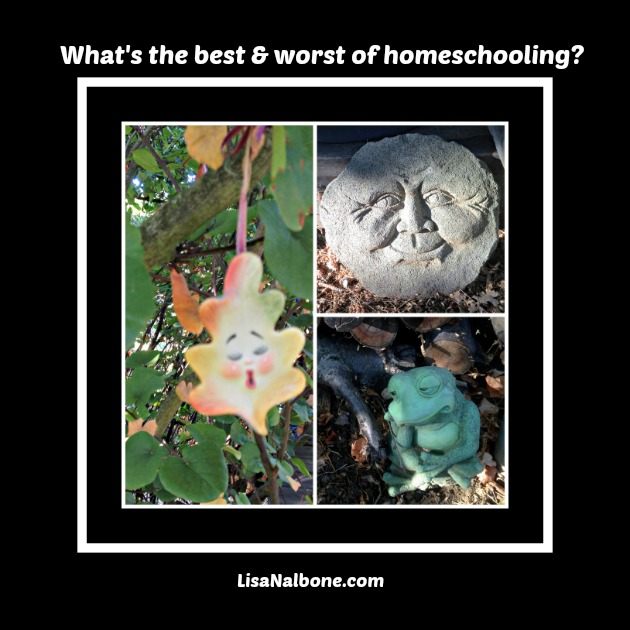 What is Best Thing and Worst Thing about Homeschooling?