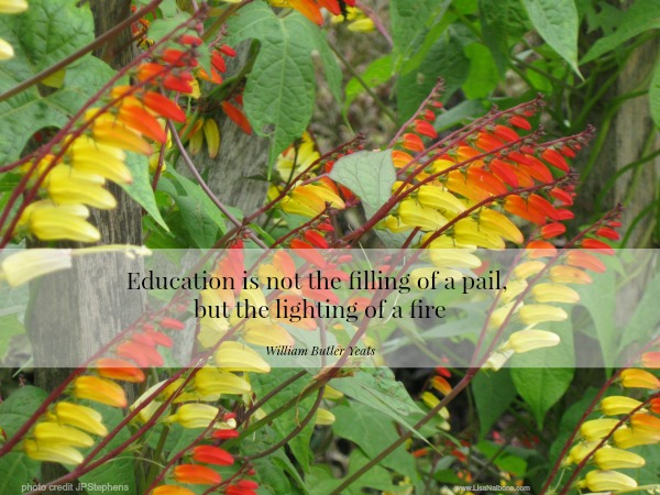 Cultivating the Future: Inspiring Communities of Learners, Yeats quote image at www.lisanalbone.com photo copyright JPStephens