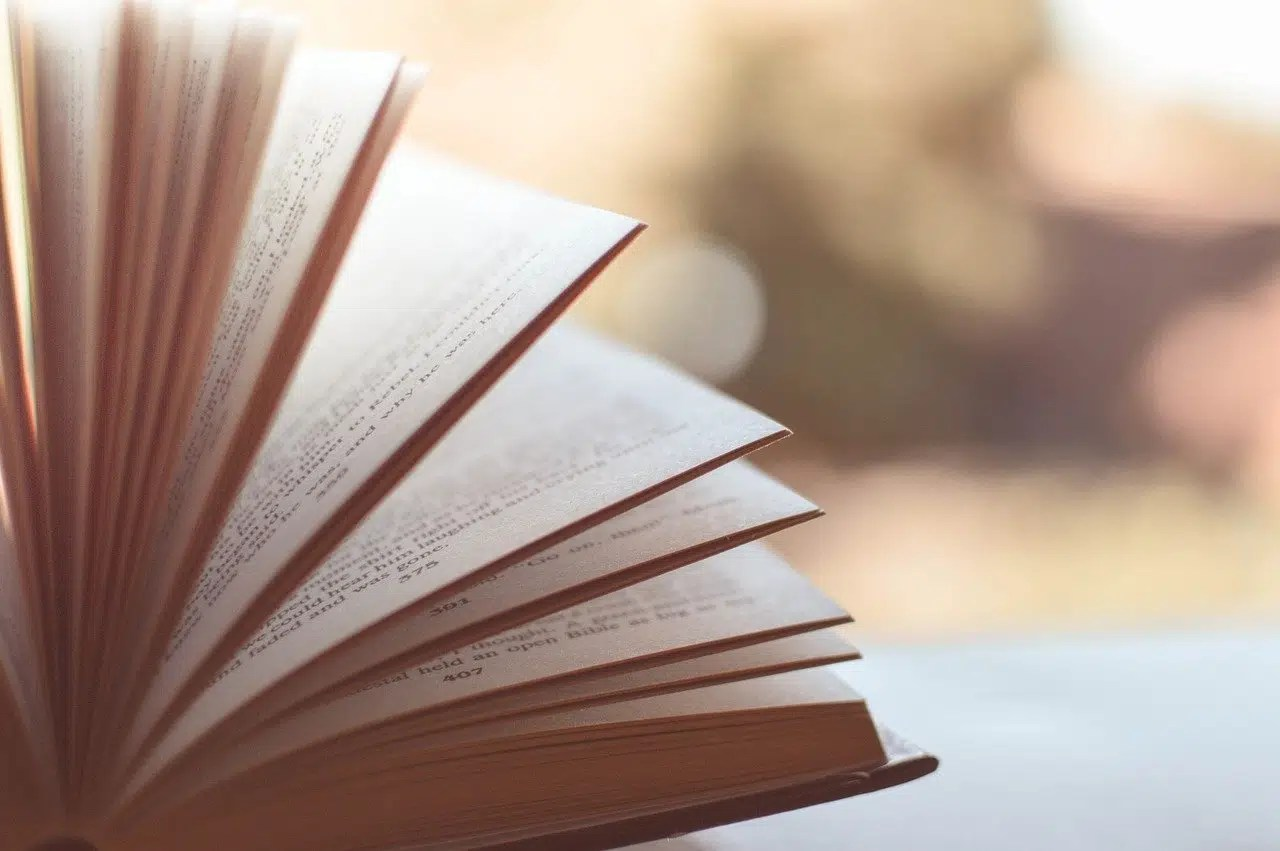 5 amazing books I loved to read in 2020