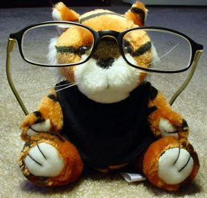 526749_professor_tiger