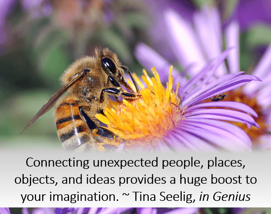 Connecting unexpected people, places, objects, and ideas provides a huge boost to your imagination. ~ Tina Seelig, in Genius