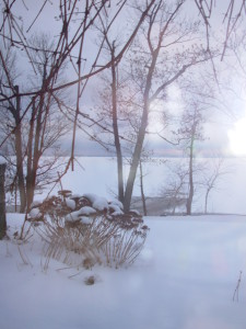 Vermont Winter Day photo by Lisa Lindahl