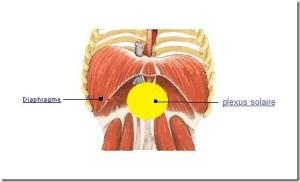 Diaphragme Plexus solaire