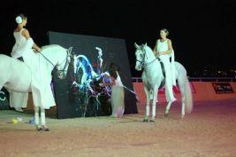 cheval_roi