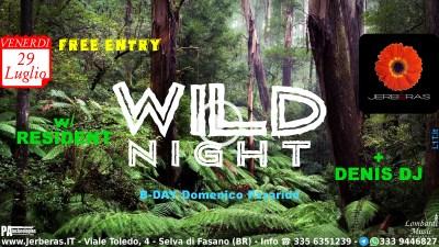 Wild Night 1.0 @ Jerbéras