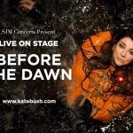 פוסט אורח: מסע של 3 שעות לתוך הראש של Kate Bush