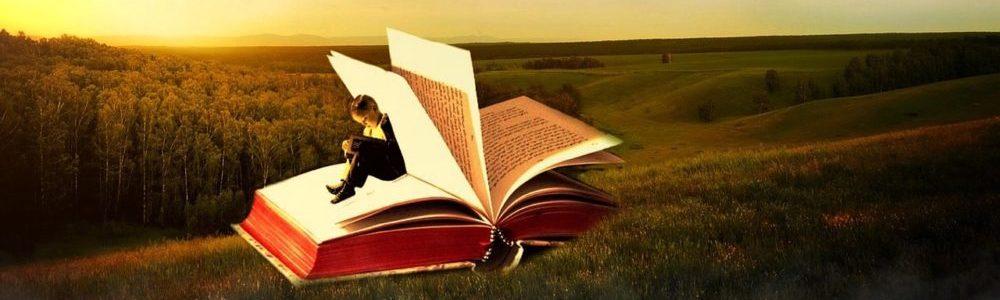 Literacy Edizione 2016 Udine